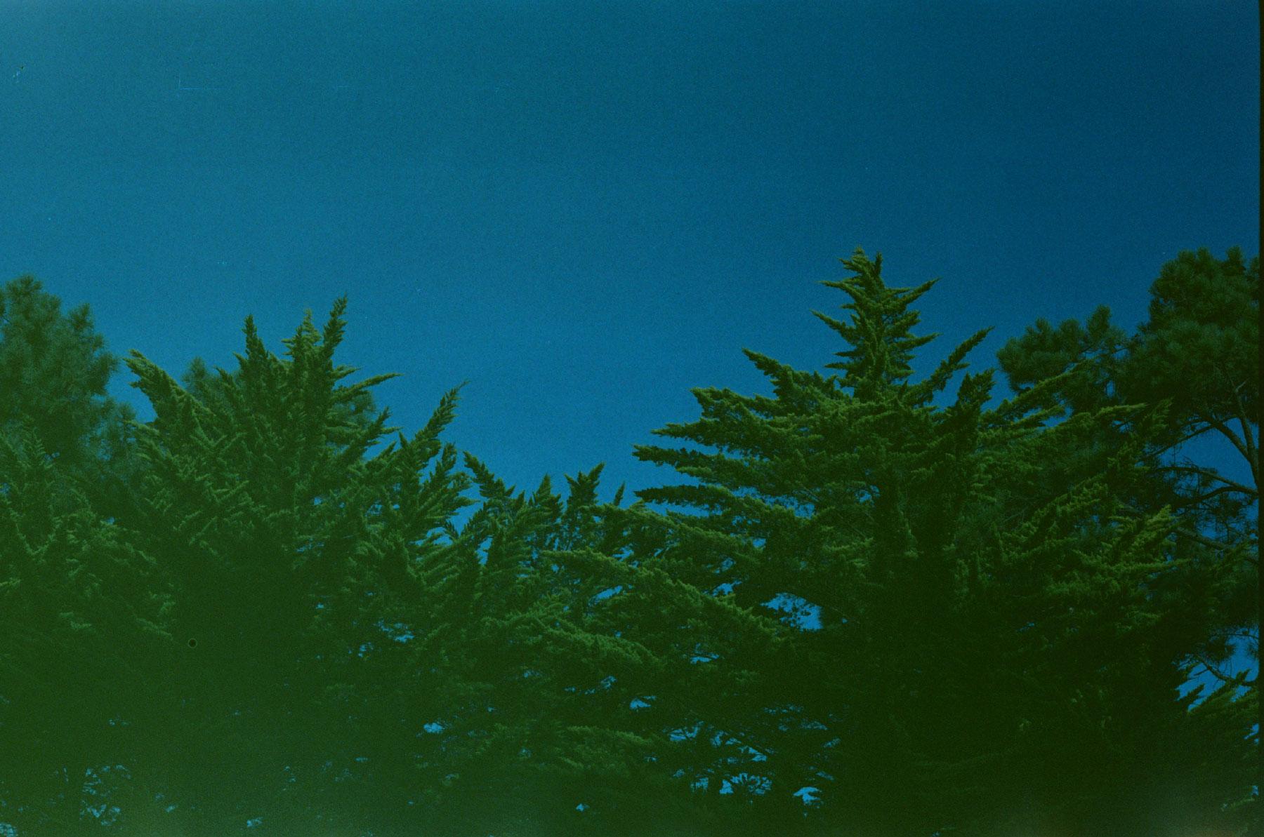 Failed film photography
