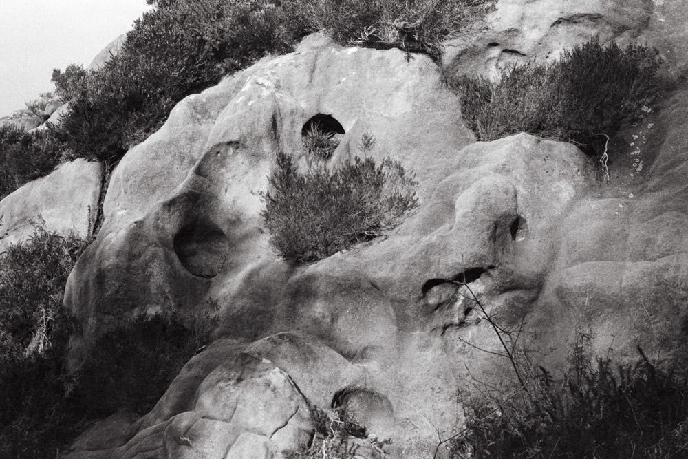 Marine Lebeau, photographie argentique contemporaine